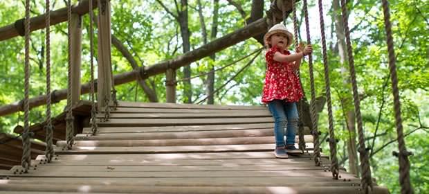 アスレチックで遊ぶ女の子の画像