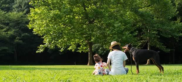 芝生の上で寛ぐ親子と愛犬